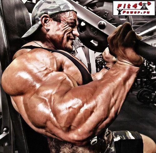 Тренування дельтовидних м`язів