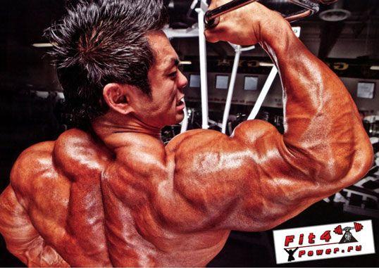 Тренування найширших м`язів спини