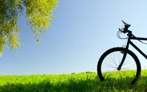 Догляд за велосипедом, як мити, чистити і змащувати велосипед