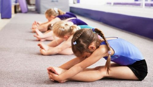 sekcij-gimnast
