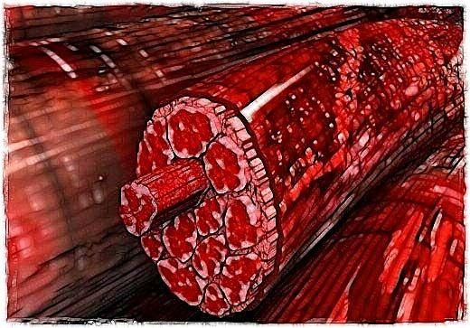 Типи м`язових волокон в організмі