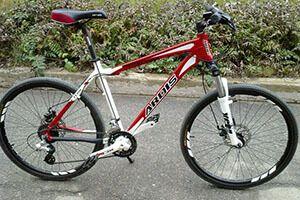 Велосипед ардіс (ardis): огляд, відгуки, ціни