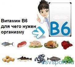 Вітамін в6 - для чого потрібен організму