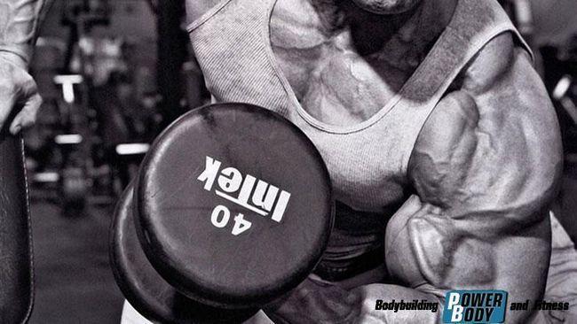 Вплив гормонального рівня на синтез білка і зростання м`язів