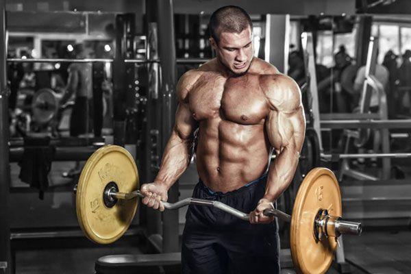 М`язи під час інтенсивного фізичного навантаження.