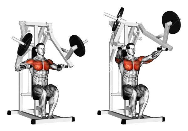 тренажер Хамме для грудних м`язів