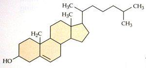Формула_холестеріна_formyla_holesterina